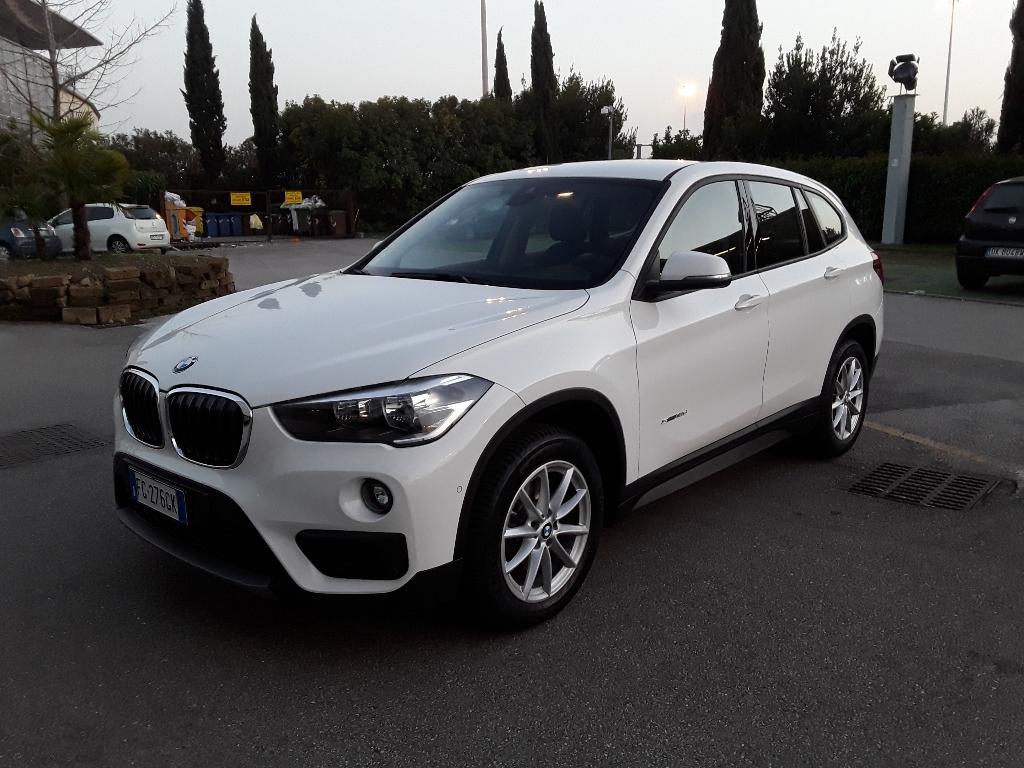 BMW X1            (F48) X1 sDrive18d Business - 1